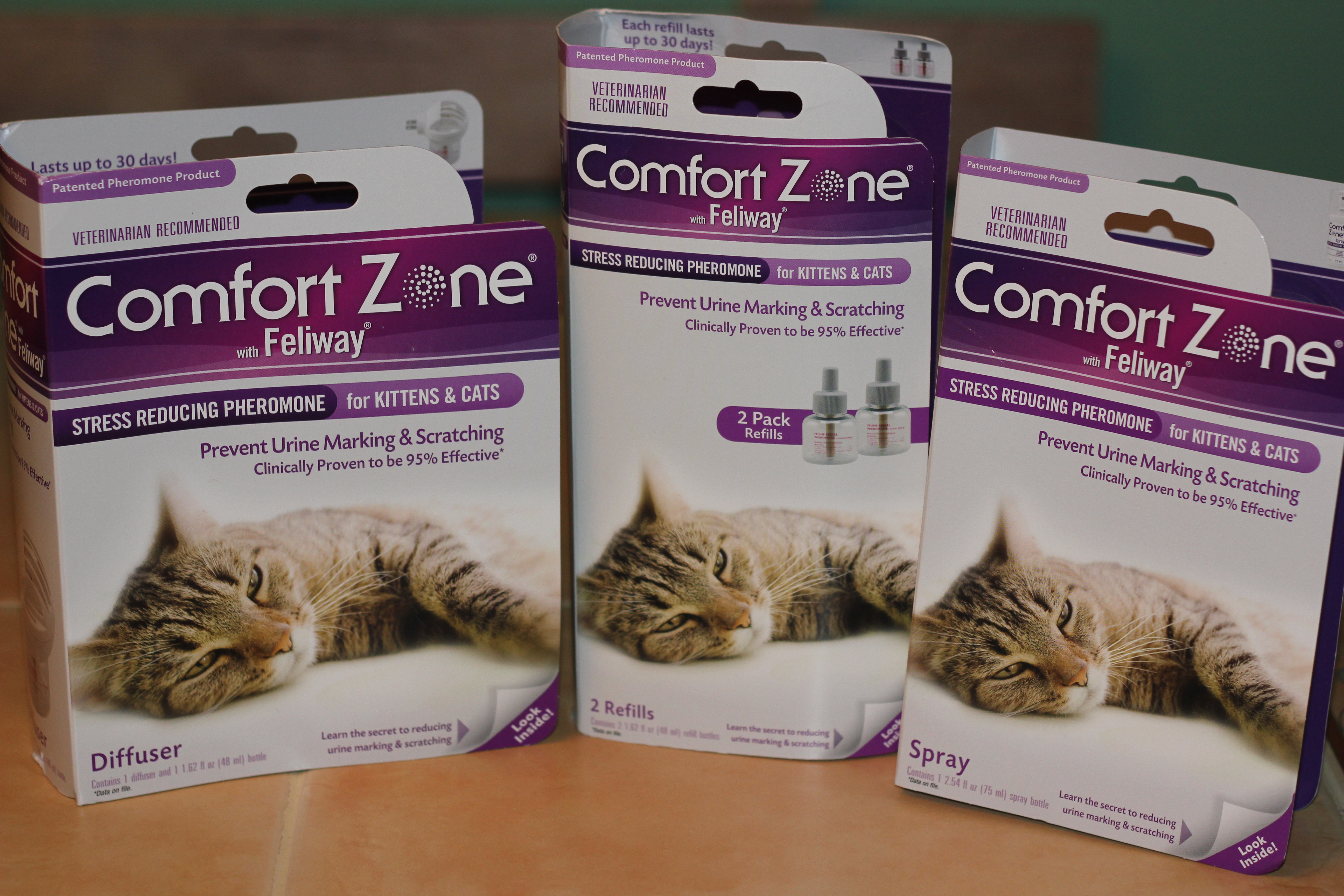 of asthma is needs love feliway cat sparrow zone your comfort comforter cats potion the